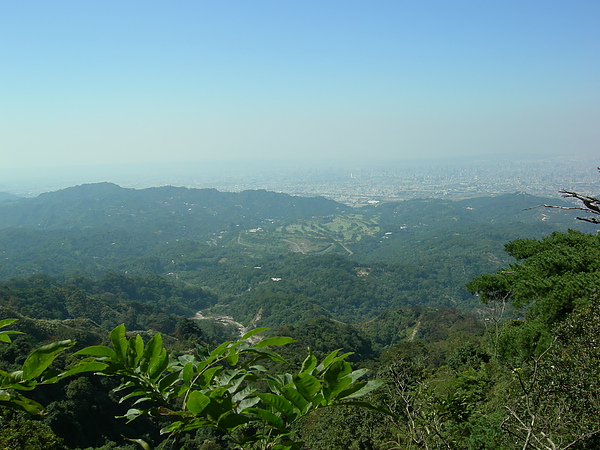台美社登山隊大坑3號步道登山記 047.jpg