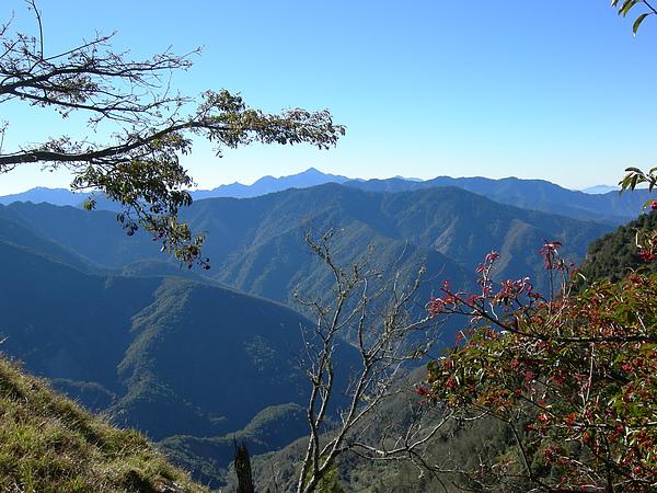 塔塔加鞍部登山活動 059.jpg