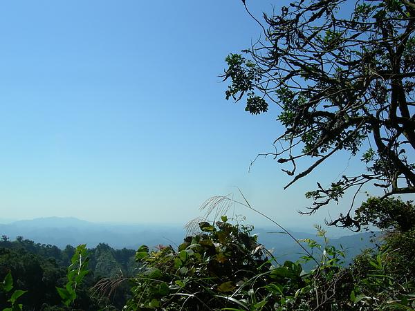 台美社登山隊大坑3號步道登山記 042.jpg