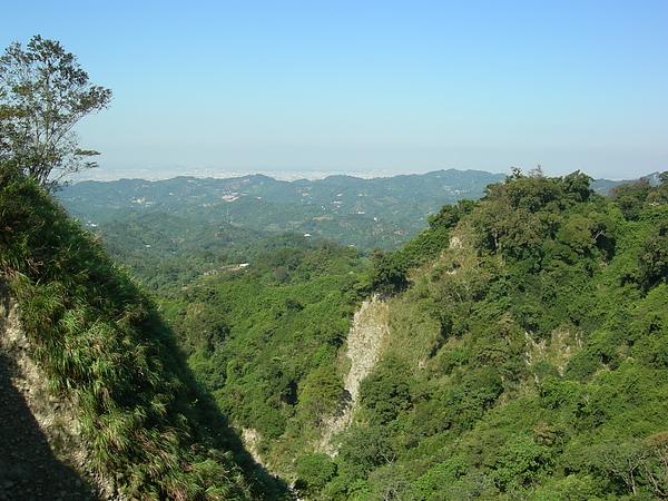 台美社登山隊大坑3號步道登山記 031.jpg