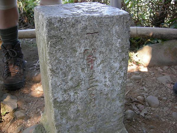 台美社登山隊大坑3號步道登山記 089.jpg