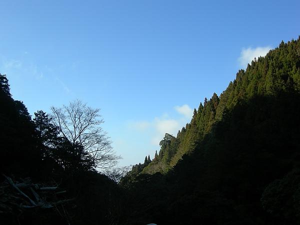 塔塔加鞍部登山活動 026.jpg