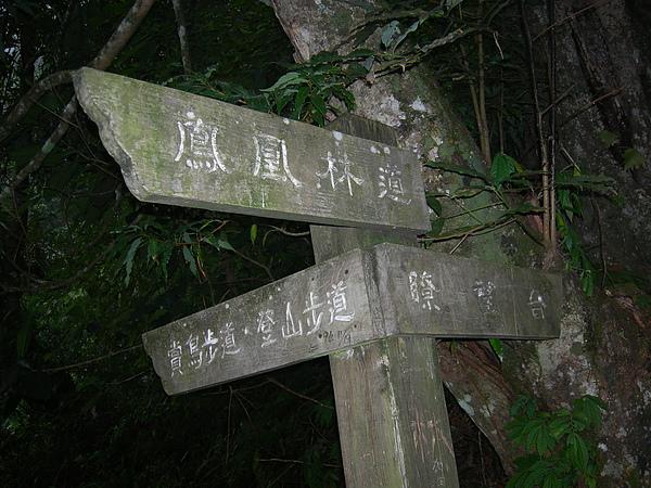 台美社登山隊溪頭天文臺登山記 037.jpg