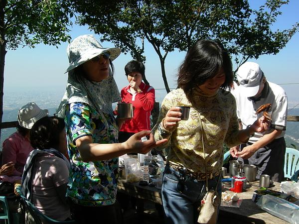台美社登山隊大坑3號步道登山記 051.jpg
