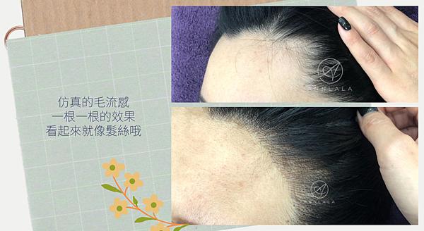 15 仿真的毛流感.png