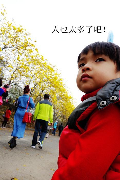 DSC02990_副本.jpg
