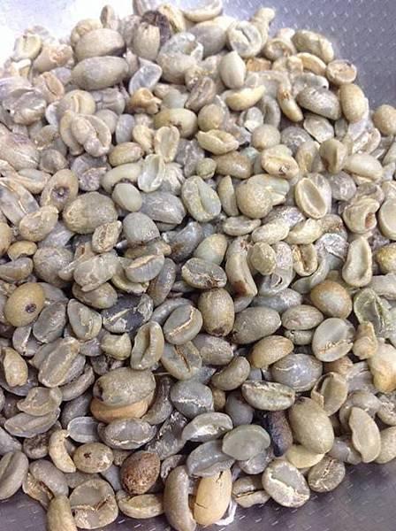 咖啡豆-02.jpg