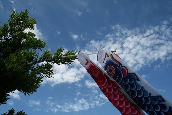飛飛鯉魚旗在我家~