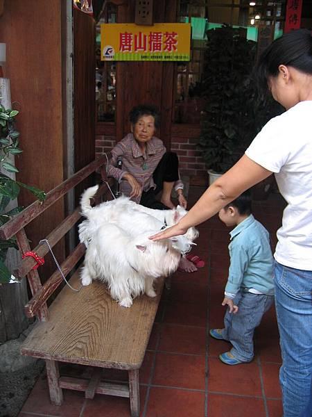 小朋友看狗狗