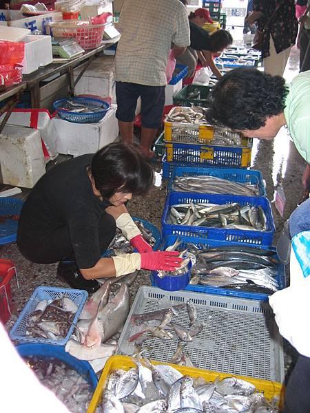 台中港漁獲