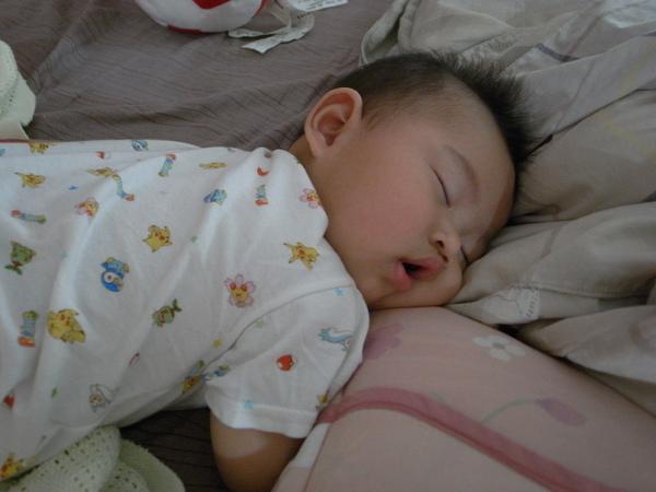 熟睡中的溜