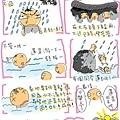 花蓮最後up.jpg