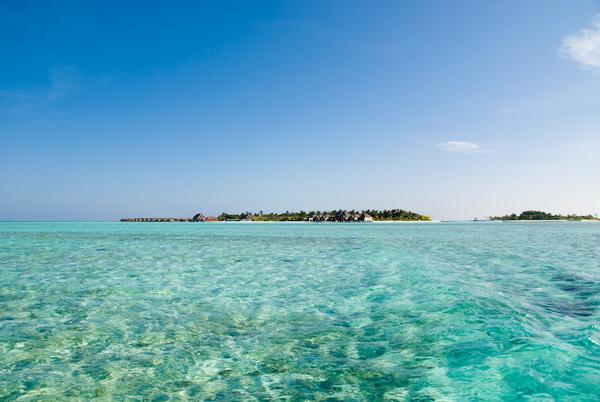 Local Island Trip