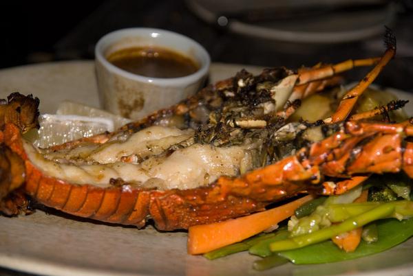 Maldivian Lobster