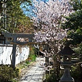 往南出口附近小神社門口