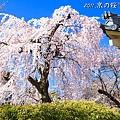 醍醐寺 靈寶館