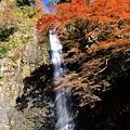 箕面滝(箕面大滝)