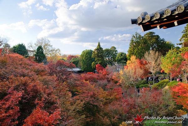 東福寺-通天橋往回望