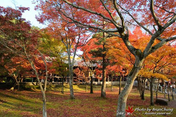 東福寺-庭園