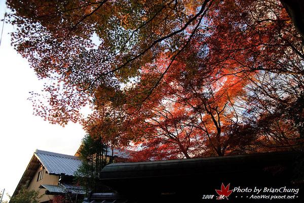 東福寺-日落