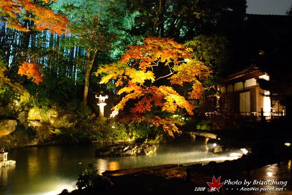 青蓮院門跡-雨中庭園