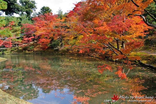 高台寺~水池