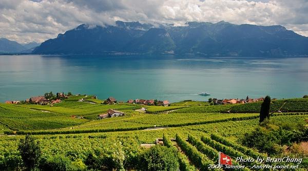 Lavaux terraced vineyards