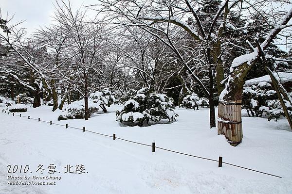 桂坂口 入口不遠處