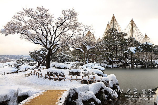 霞ヶ池 唐崎松 雪吊