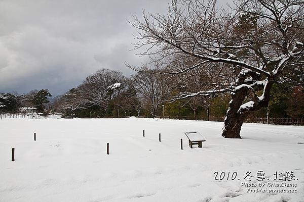 公園地上都是雪