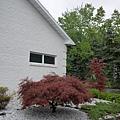 車庫入口在旁邊,後院的入口也在同個方向~P1050586.JPG