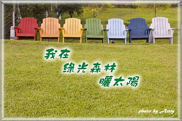 綠光森林.jpg
