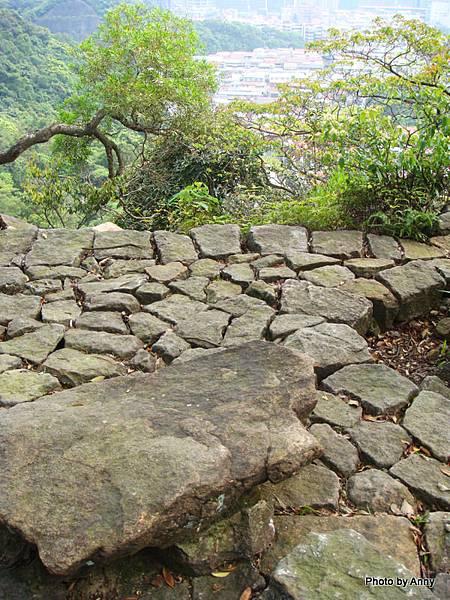 金面山 白臼樹石地坪