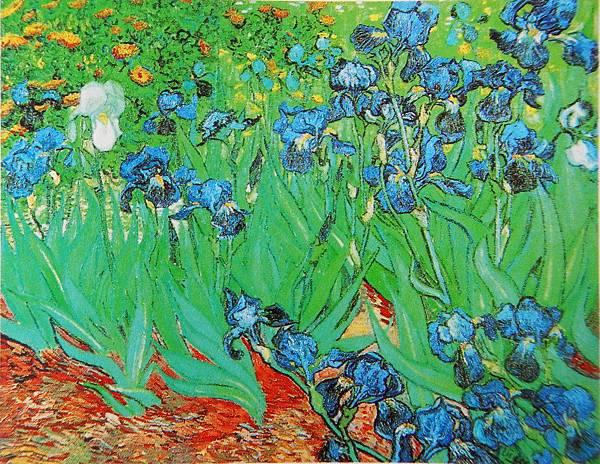 鳶尾花(1889 法國聖瑞米)