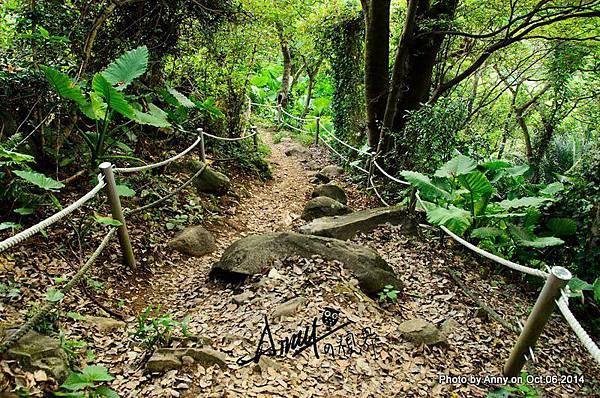忠義山步道