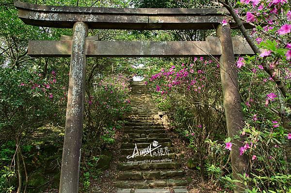 猴硐神社6.jpg