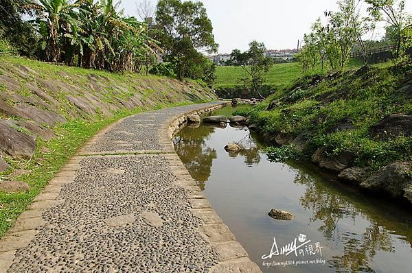 大溝溪溪畔步道9.jpg