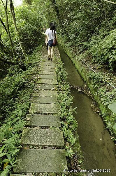 小半天長源圳生態步道4.jpg