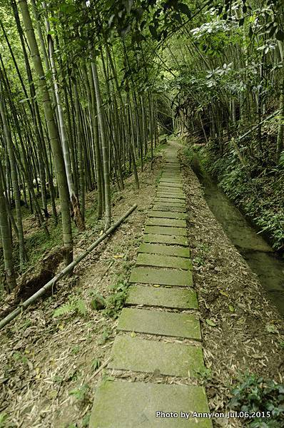 小半天長源圳生態步道9.jpg