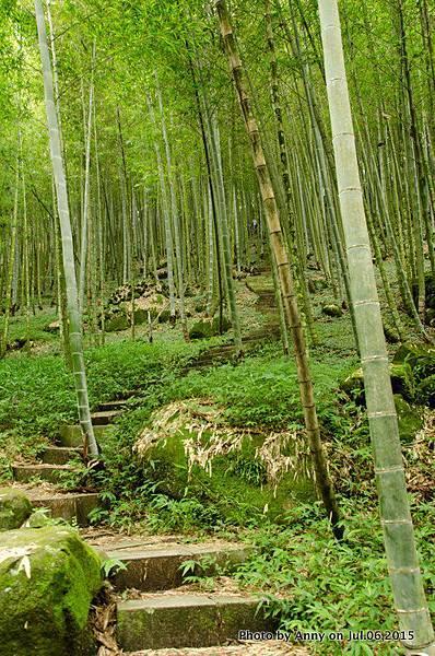 小半天長源圳生態步道22.jpg