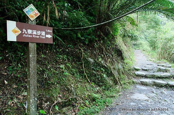 宜蘭九寮溪自然步道10.jpg