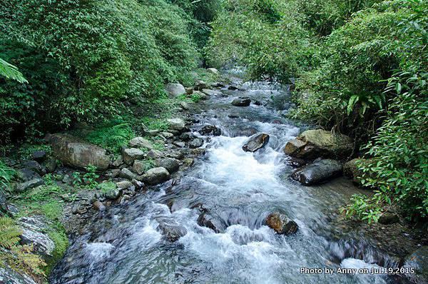 宜蘭九寮溪自然步道17.jpg