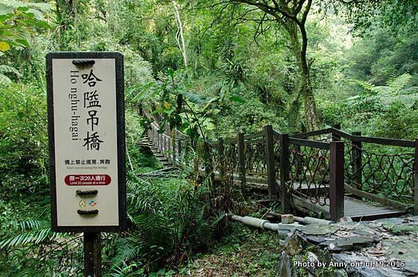 宜蘭九寮溪自然步道27.jpg
