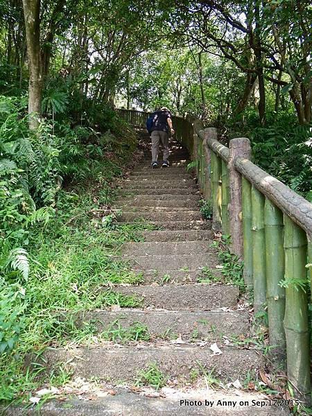 猴山岳步道2.jpg