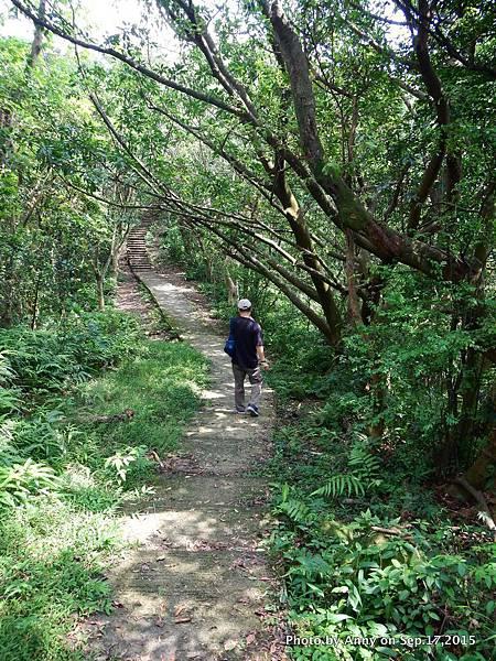 猴山岳步道5.jpg