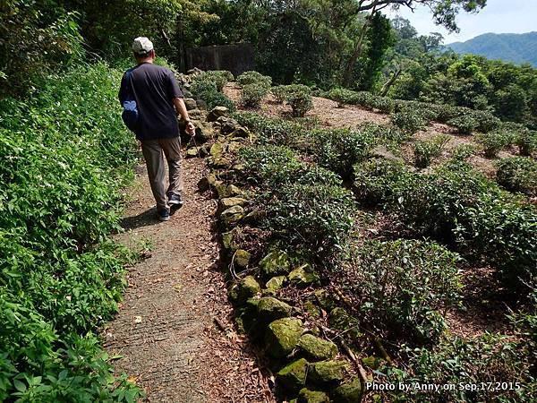 猴山岳步道4.jpg