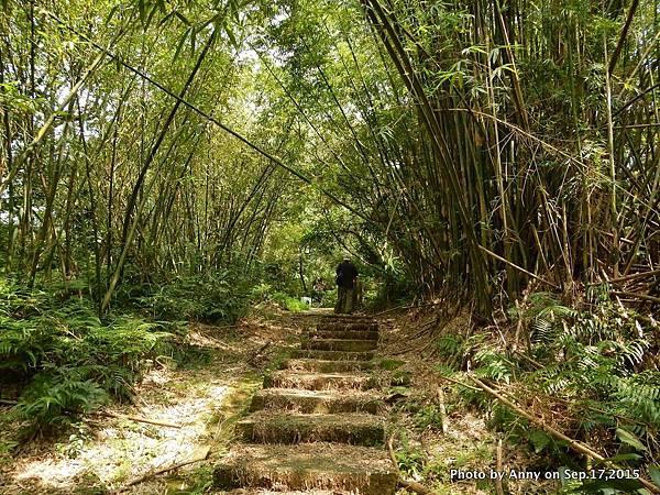 猴山岳步道6.jpg