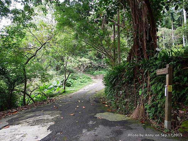 猴山岳步道7.jpg