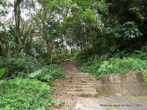 猴山岳步道8.jpg