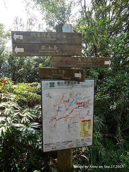 猴山岳步道24.jpg